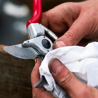 Click here for more information about the Tool Sharpening Workshop and other Pop-Up Events